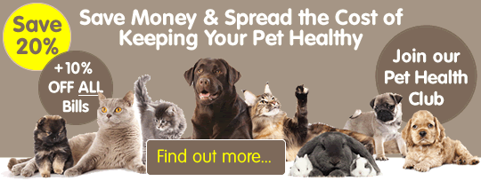 Save money & spread the cost of keeping your pet healthy